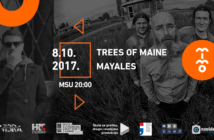 mimo Trees of Maine i Mayales