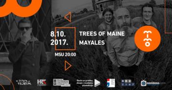 mimo Trees of Maine i Mayales